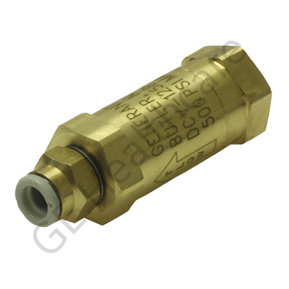 Check Valve with Filter and Straight Push Connect Fitting